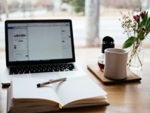 curso editor web wordpress